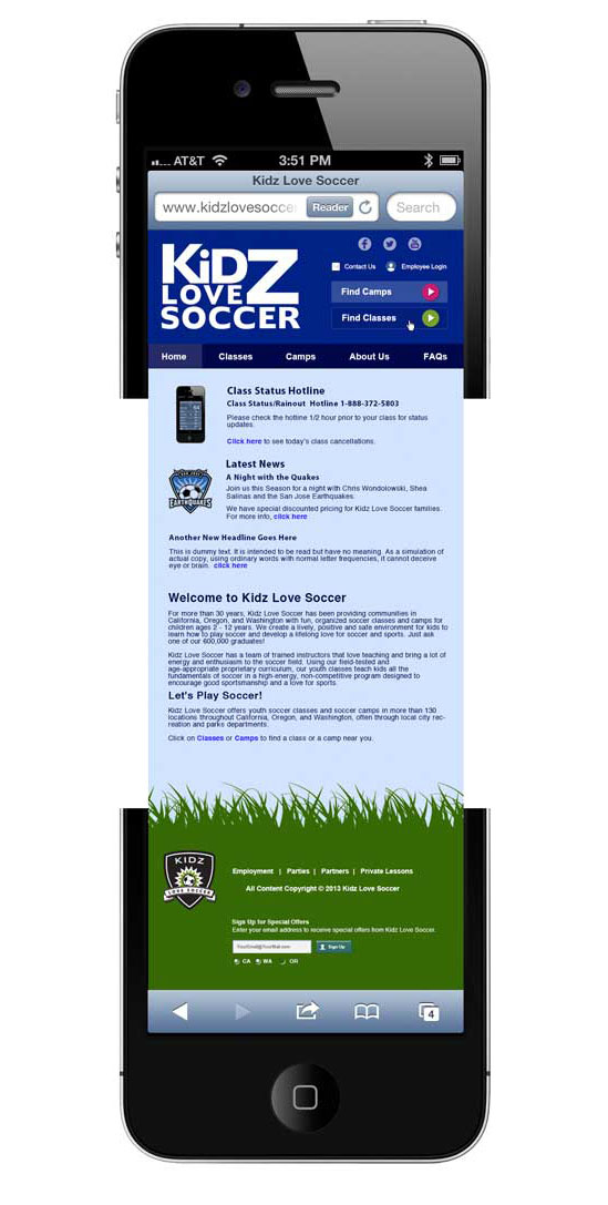 Mobile Version of Website